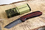 Buckshot Knives PBK220 Thumb Open Spring Assisted Tanto Cleaver Classic Wood Handle Pocket Knives (PBK220DS)