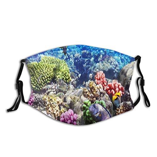 VICAFUCI Lot Hurghada Riff Korallenfisch Rot Ägypten Tiere Tierwelt Natur Ozean Leben Aquarium Hawaii Unter Wasser Staubwaschbarer wiederverwendbarer Filter und wiederverwendbarer Mund Warmes