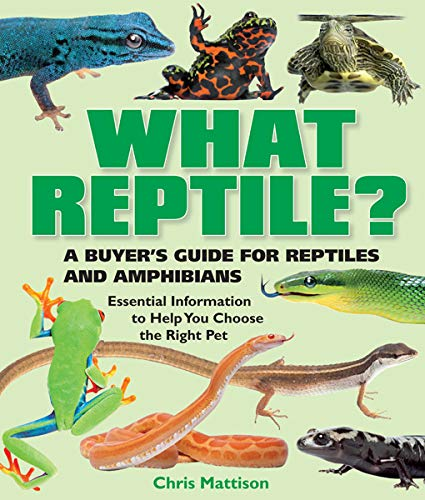 What Reptile?: A Buyer's Guide for Reptiles and Amphibians