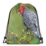 Conveniente negozio Uccello pappagallo ciuffo ramo coulisse zaino borsa leggera palestra viaggio yoga casual snackpack borsa a tracolla per escursionismo nuoto spiaggia