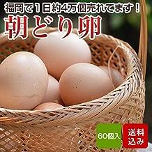 卵 60個入 朝どり たまご タマゴ 福岡産 割れ保証一割6個含む