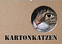 Karton Katzen (Wandkalender 2022 DIN A2 quer): Lustige Katzen begleiten Sie das ganze Jahr. (Geburtstagskalender, 14 Seiten )