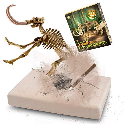 MUSCCCM Kit di scavi per Dinosauri Mammut, Kit di scavo fossili di Scheletro Dino Modello di Dinosauro Realistico Giocattoli educativi Regalo per Bambini Ragazzi Ragazze