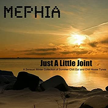 Just a Little Joint (A Sensual Winter Collection of Summer Chill out and Chill House Tunes)