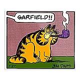 Garfield     das beeindruckendste und eleganteste