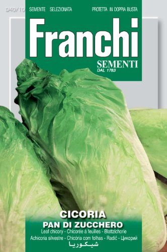 Seeds of Italy Ltd. Franchi Graines d'endives Pain de sucre