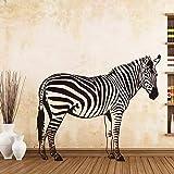 mlpnko Attraktiver Zebra Wandaufkleber Hintergrund