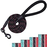 Vivaglory 5ft Heavy Duty Rope Dog Leash with The Most Comfortable Padded Handle, Reflective Black...
