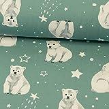 Baumwolljersey Eisbären & Sterne mint Kinderstoffe - Preis