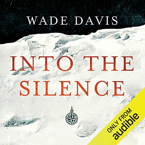 Into the Silence  By  cover art
