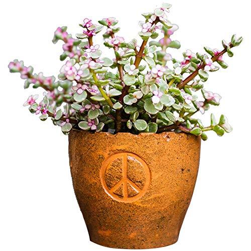 Antiker Blumentopf Niedlicher Keramik-Kunsttopf Home Decoration Keramik-Kunstvase Kaffeetasse Form Pflanzenpflanzer Europäischer Retro Hoher Blumentopf Blumentopf Blumenkorb Lebensmittelgeschäft Gar