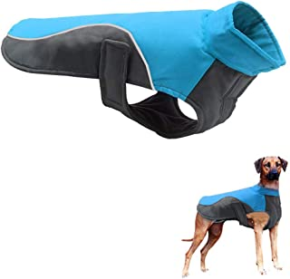 Best compression coat for dogs Reviews