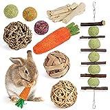 Sofier Rabbit Chew Toys 10 Pack Natural Bunny Toys Handmade Rabbit Treats Small Animal Toys Molar Care Apple Sticks Timothy Ball Sweet Bamboo Carrot for Bunny Guinea Pig Hamster