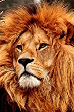 Regal Golden Lion: 150 page lined 6 x 9 notebook/diary/journal