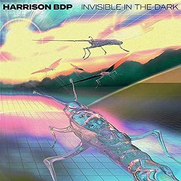 Invisible in the Dark