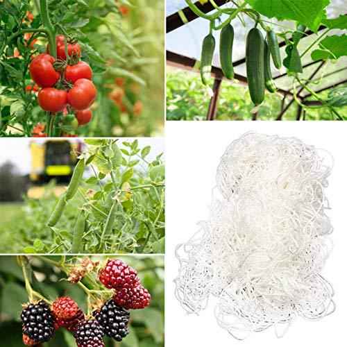 Ranknetz Mit Großer Maschenweite Gartennetz Für Den Perfekten Wachstum Von Tomaten, Gurken Und Kletterpflanzen Das Optimale Rankhilfe Netz Für Garten Und Gewächshaus (5,6 X 65,6 Ft / 1,7 X 20 Mc)
