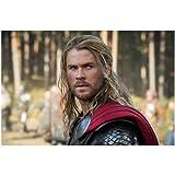 Chris Hemsworth 8 x 10 Photo - Thor Snow and the Huntman headshot close