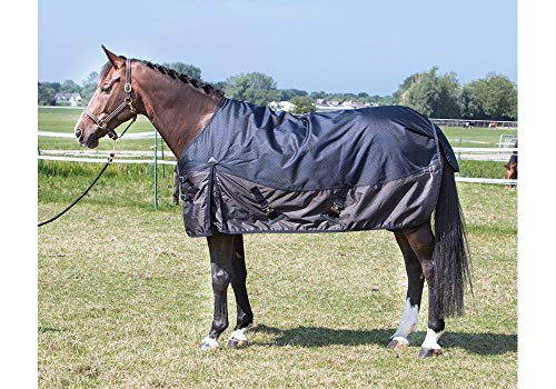 Harry's Horse 32204528–165 cm X-Treme 1200 200 g – 165 cm, M