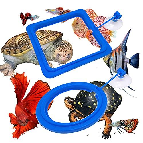 Zvaiuk 2pcs Fish Feeding Ring Cover