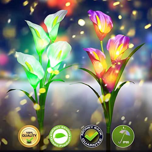 Draussen Solar Gartenlichter LED Solarbetrieben Garten Pfahl Lichter Pfad leuchtet mit 8 Calla-Lilienblume, Mehrfarbig Ändern Solarleuchten für Garten Terrasse, Miziyii (2 Packungen Lila und Weiß)