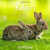 Rabbits 2021 Wall Calendar: Rabbits 2021 Calendar, 18 Months.
