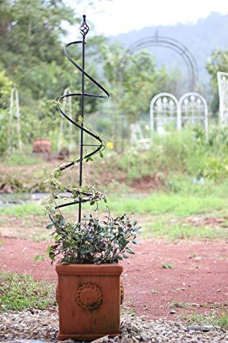 qwess Schmiedeeisen Spiral Pflanze Klettergerüst Clematis Windmühle Jasminrahmen Pflanze Modellierständer Durchmesser 20 X Höhe 140cm