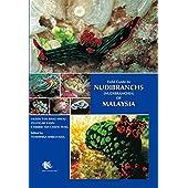 Field Guide to Nudibranchs (Nudibranchia) of Malaysia