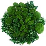 N\A Woohome Musgo Artificial, 30 Pz Piedras Artificiales Decorativas, 30G Musgo Preservado para Arreglos Florales, Jardines de Hadas, Manualidades