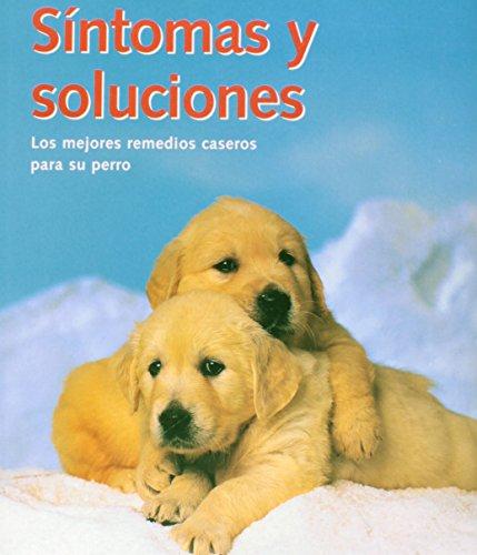 Síntomas Y Soluciones. Los Mejores Remedios Caseros Para Su Perro