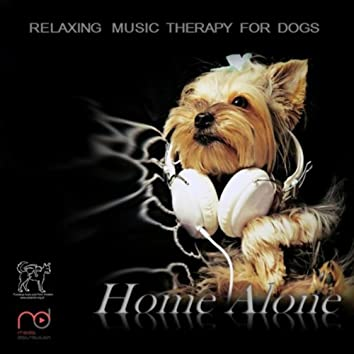 Music Therapy for Dogs: Home Alone