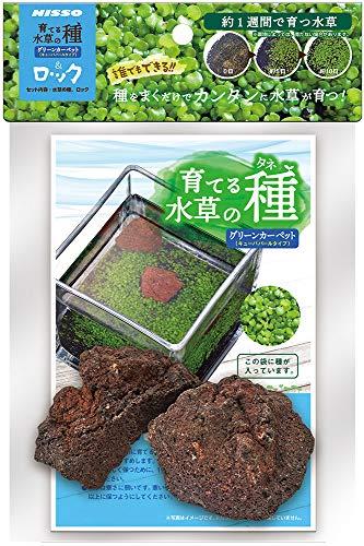 ニッソー 育てる水草の種グリーンカーペット&ロック 13x5x19センチメートル (x 1)