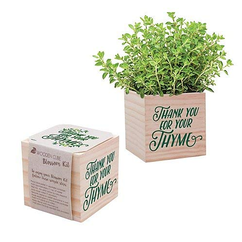 Cheersville Desk Accessory for The Office - Thyme Plant Seed Packet, Peat Pellet, and Natural Pine Wooden 3x3 inch Cube Planter - Employee Appreciation Gift - Thank You for Your Thyme