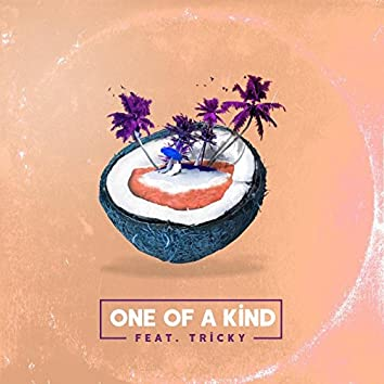 One of a Kind (feat. Tricky)