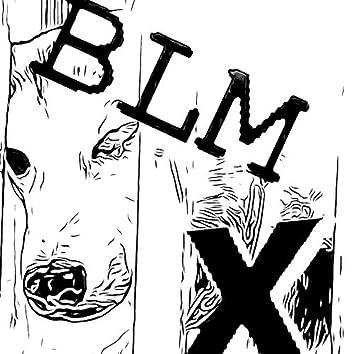 BLM, Pt. 10