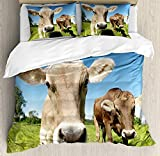 <span class='highlight'><span class='highlight'>JamirtyRoy1</span></span> Farm Animal Duvet Cover Set Single Size, Close Up Sweet Photo of Cows at Meadow in a with Open Sky, Decorative 3 Piece Bedding Set with 2 Pillow Shams, Apple Green Tan Sky Blue Caramel