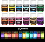 HEMOER Polvo Fluorescente, 12 colores Pigmentos Luminiscente para Pintura, uñas, manualidades, resina epoxi, cara, cuerpo, Pintura en polvo fluorescente 12 x 20gr
