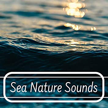 Sea Nature Sounds - Gentle & Soothing Natural Sounds of Crashing Waves and Flowing Waters