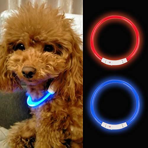 HPOLW Collare Luminoso per Cani Collare di Cane Impermeabile Ricaricabile USB LED Collare Luminoso di Sicurezza per Animale Domestico d'ardore Misura Regolabile Adatto Tutti i Cani Gatti Blu