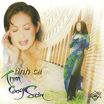 Tình Ca Trịnh Công Sơn
