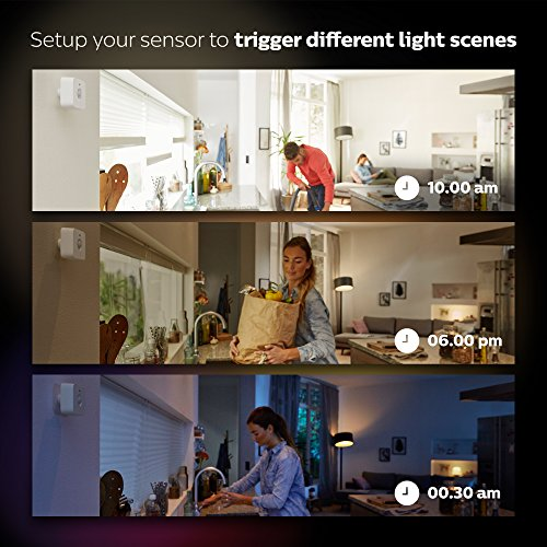Philips Hue Hue Indoor Motion Sensor (Works with Alexa), Synthetics, White