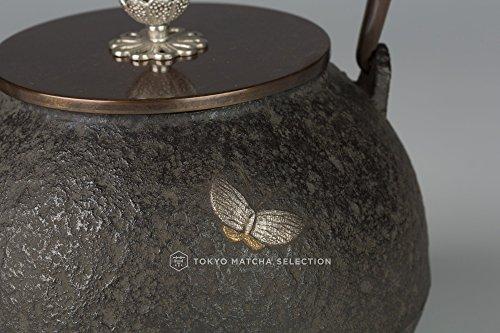 TOKYO MATCHA SELECTION - [Imperial] Takaoka Tetsubin : Hojyu (Cintamani) Chrysanthemum Pattern w gold & silver inlay - Iron Kettle Teapot - Japan Import [Standard ship by EMS : w Tracking & Insurance]