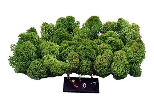 Muwse Island-moos-köpfe 3-7cm TT 25g Tannen-grün Hand-gereinigt fein verästelt. Modellbau-moos Diorama-zubehör Modelleisenbahn-büsche Bastel-moos