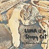 Luna is a Sleepy Cat