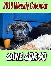 cane corso 2018 calendar