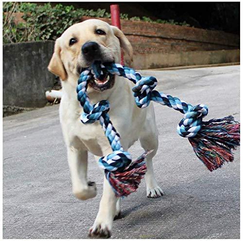cinsey hond puppy kauwen touwtje speelgoed interactieve kauwen tandheelkundige zorg voor kleine tot middelgrote honden knopen knuffels speelgoed voor speeltijd en tanden schoonmaken