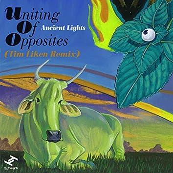 Ancient Lights (Tim Liken Remix)