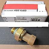 4921503 Oil Pressure Sensor for Cummins ISC/ISL/QSL/QSC/C Excavator Spare Part
