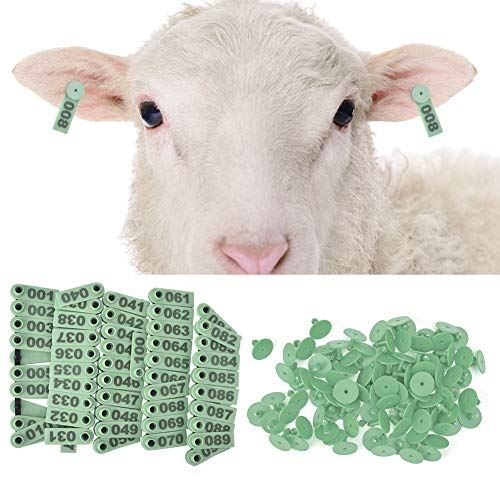 zielone szklanki ikea