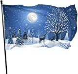 Viplili Flagge/Fahne, Fly Breeze Garden Flag House Flag Yard Banner Flag-Wish You Merry Christmas-Winter Outdoor Seasonal and Holiday Yard Flag Banner 3x5 Ft (90x150cm)