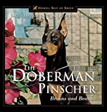 The Doberman Pinscher - Brains and Beauty